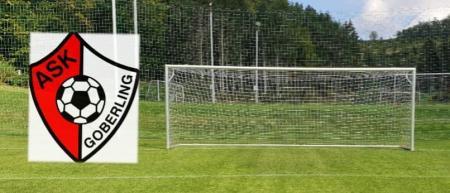 Fußballtor mit Netzbügeln in Bodenhülsen, 7,32 x 2,44m Herren mit Tornetz